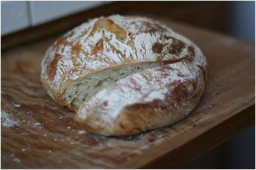Fresh_bread_2